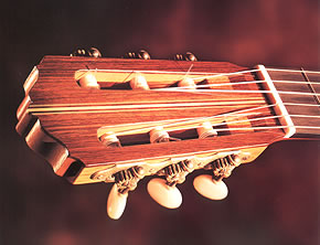 This Instrument is made from beautiful Brazilian Rosewood